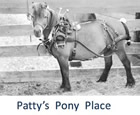Patty's Pony Place